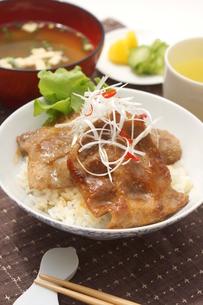豚丼の写真素材 [FYI00886539]