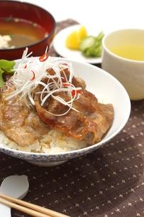 豚丼の写真素材 [FYI00886540]