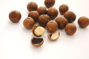 殻つきマカダミアナッツの写真素材 [FYI00886543]