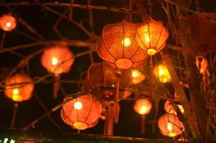 夜の幻想的な灯りの写真素材 [FYI00886688]