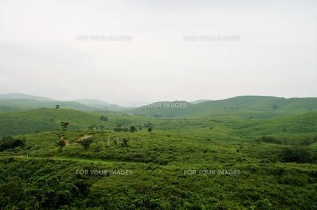 秋吉台国定公園の風景の写真素材 [FYI00886789]