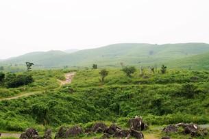 秋吉台国定公園の風景の写真素材 [FYI00886791]