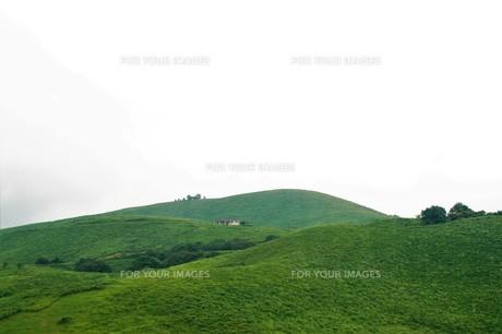 秋吉台国定公園の風景の写真素材 [FYI00886792]