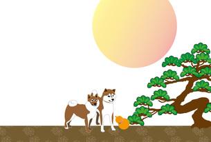 柴犬とひょうたんと松の木と日の出の和風ポストカードのイラスト素材 [FYI00886912]