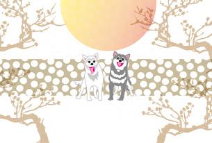 犬と梅の木と日の出のイラストの和風ポストカードのイラスト素材 [FYI00886924]