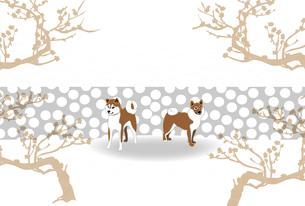 柴犬と梅の木のイラストのポストカードのイラスト素材 [FYI00886925]