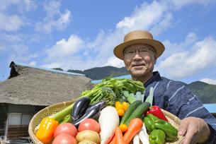 田舎暮らしで野菜を収穫しいてる笑顔のシニアの写真素材 [FYI00887062]