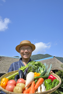 田舎暮らしで野菜を収穫しいてる笑顔のシニアの写真素材 [FYI00887064]