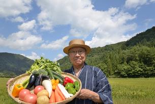 田舎暮らしで野菜を収穫しいてる笑顔のシニアの写真素材 [FYI00887065]