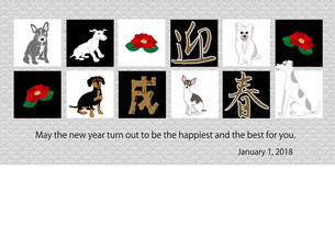 犬たちと椿の花のイラストの年賀状テンプレート 戌年のイラスト素材 [FYI00887076]