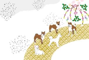 柴犬と梅の花の和風イラストのポストカードのイラスト素材 [FYI00887089]