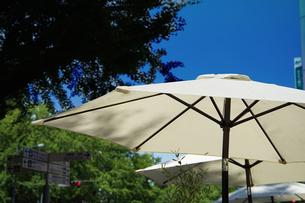 晴れた日の青空とパラソルの写真素材 [FYI00887163]