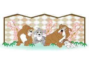犬たちと猫のイラストのメッセージカードのイラスト素材 [FYI00887368]