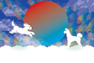 白い犬と日の出と虹色の雲のイラストのメッセージカードのイラスト素材 [FYI00887373]