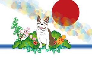 和風でポップな犬とひょうたんと松竹梅のイラストのポストカードのイラスト素材 [FYI00887381]