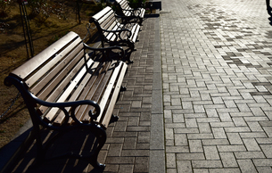 夕日に照らされた公園のベンチの写真素材 [FYI00887664]