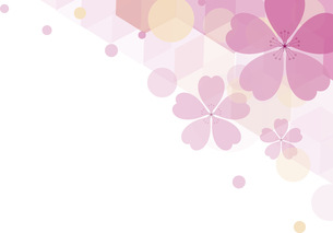 新春の桜の背景のイラスト素材 [FYI00887859]