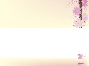 新春の桜の背景のイラスト素材 [FYI00887860]