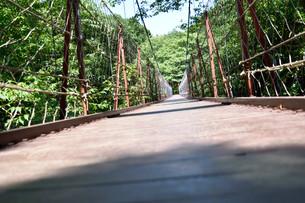 吊橋の写真素材 [FYI00887987]