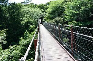 吊橋の写真素材 [FYI00887990]