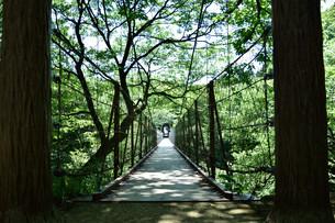 吊橋の写真素材 [FYI00887991]