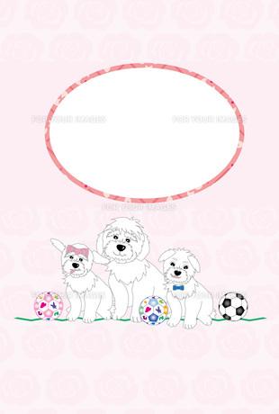 犬の親子とサッカーボールのピンクの写真フレームのはがきテンプレートのイラスト素材 [FYI00888164]
