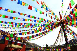 チベット、正月を迎える準備をする人々やその風景の写真素材 [FYI00888376]