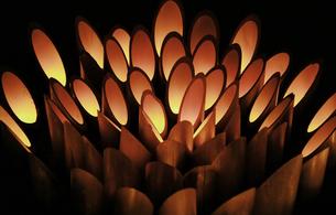公園の広場の竹のロウソクの灯りの写真素材 [FYI00888491]