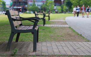 公園の歩道脇のベンチの写真素材 [FYI00888512]
