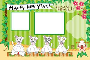ポップな犬と鏡餅の写真フレームの年賀状テンプレートの写真素材 [FYI00888549]