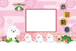 かわいい犬の家族と梅の花の写真フレームの年賀状テンプレートの写真素材 [FYI00888575]