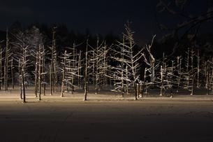 ライトアップされた冬の夜の湖の写真素材 [FYI00888590]