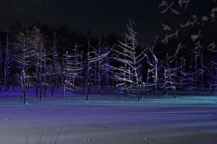 ライトアップされた冬の夜の湖の写真素材 [FYI00888593]