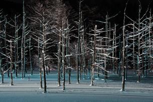 ライトアップされた冬の夜の湖の写真素材 [FYI00888603]