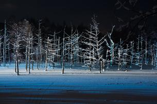 ライトアップされた冬の夜の湖の写真素材 [FYI00888605]