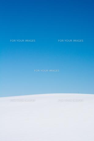 真っ青な青空と真っ白な雪原の写真素材 [FYI00888608]