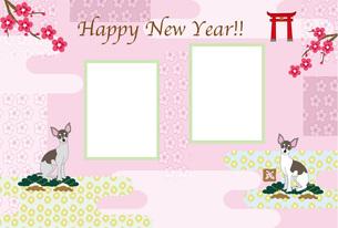 お洒落な犬と梅の花の和風イラスト写真フレームのピンクの年賀状テンプレートの写真素材 [FYI00888610]