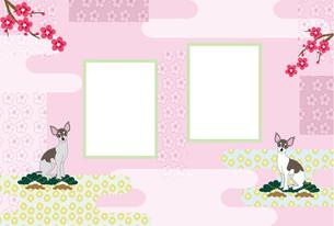 お洒落な犬と梅の花の和風イラスト写真フレームのピンクの葉書テンプレートの写真素材 [FYI00888611]