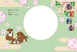 柴犬の子犬のイラスト写真フレームの年賀状テンプレートの写真素材 [FYI00888613]