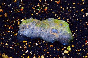 山の岩の写真素材 [FYI00889138]