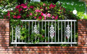 緑のある公園のレンガの塀の写真素材 [FYI00889186]