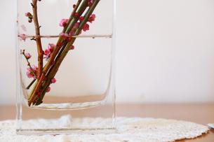 テーブルの上のガラスコップに飾られた花の写真素材 [FYI00889325]