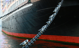 港に停泊している船の係留用の鎖に休む海鳥の写真素材 [FYI00889331]