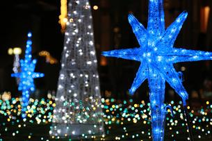 公園に飾られた青色の電飾の灯りの写真素材 [FYI00889587]