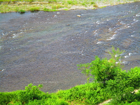 秩父の川の写真素材 [FYI00889941]