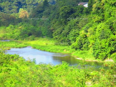 秩父の川の写真素材 [FYI00889942]