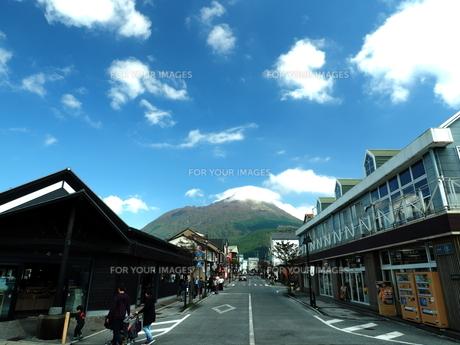 由布岳の秋 大分県の写真素材 [FYI00890174]