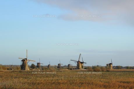 オランダの風車の写真素材 [FYI00890179]
