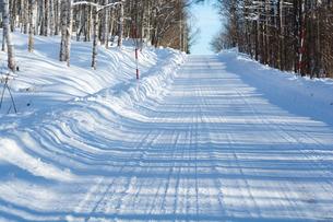 冬の坂道の写真素材 [FYI00890364]