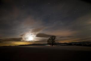 冬の星空の写真素材 [FYI00891174]